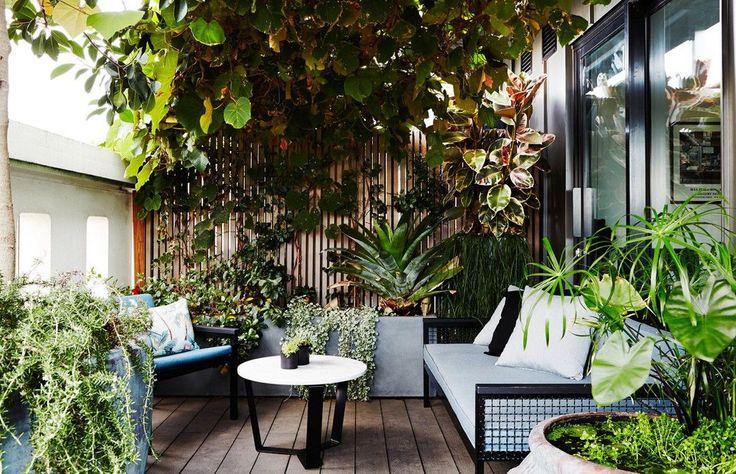 Lush vegetation for small patio