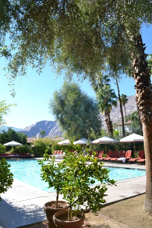 20 Best Colony Palms Hotel Palm Springs Images On