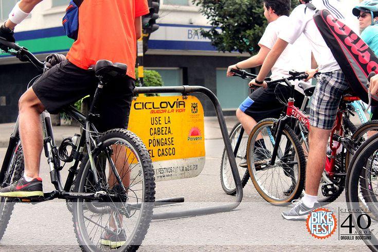 Bogota Stereotype No2: The Bicinazi