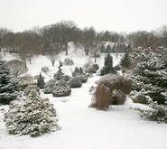 Bickelhaupt Arboretum - 340 South 14th St., Clinton, Iowa, USA