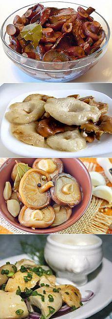 Прекрасная закуска : Соленые грузди