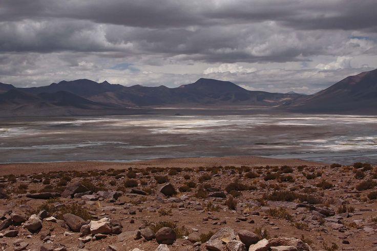 SALAR DEL HUASCO CHILE CHILE BY ILONKA CSILLAG