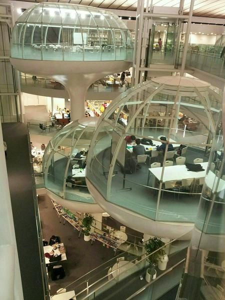 成蹊大学 図書館 / seikei university library
