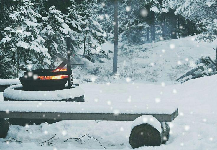 Campfire in Finland 26/16