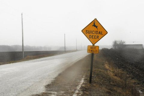 Driving along the road and having a deer jump out in front of you is one of the worst things about driving on country highways. So to make sure drivers take care while driving, a unique road sign was erected in Ford County, Illinois, warning of suicidal deer.