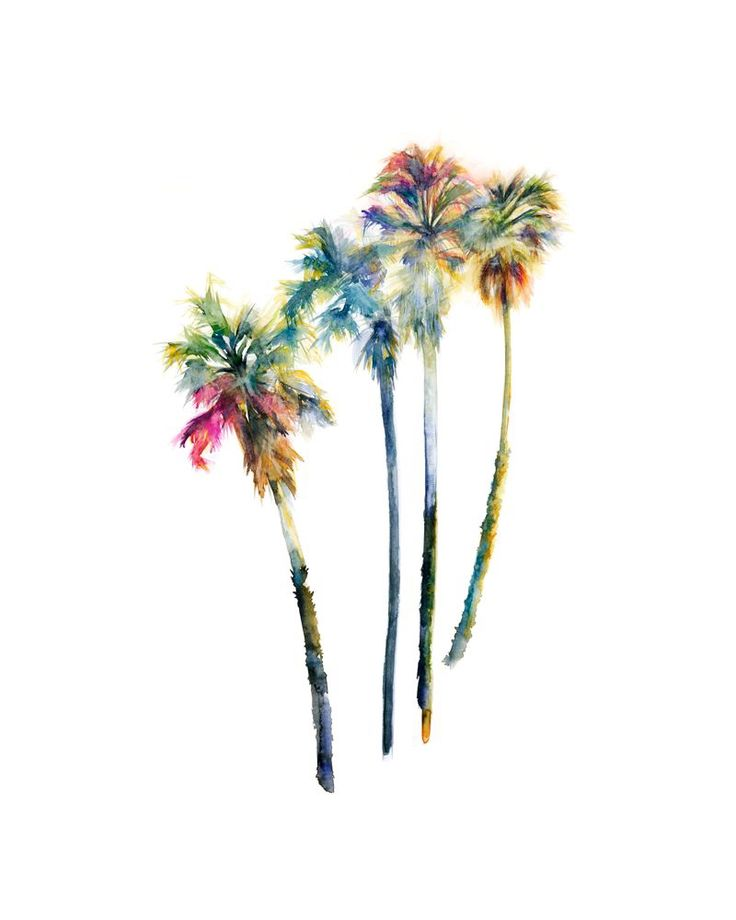watercolor palm trees by Shana Frase