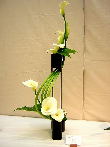 Image detail for -... Ikebana: The Beautiful Simplicity of Japanese Flower Arranging