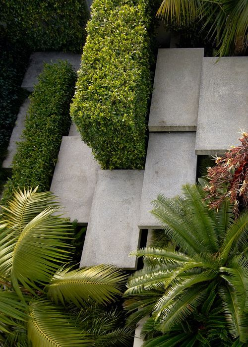 Overlapping Concrete Steps and Bush Wall Divider
