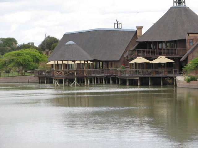 Lodge - Buffelsdrift Game Lodge, #Oudtshoorn. Unique, understated elegance in luxury tent accommodation.