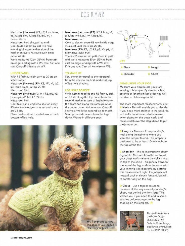 8 best Hundepulli stricken. images on Pinterest | Haustierkleidung ...