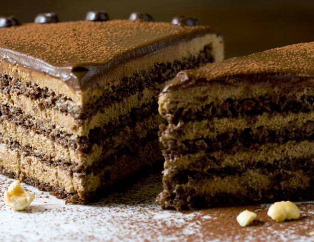 hazelnut mocha mousse torte | How could this be better? | Pinterest