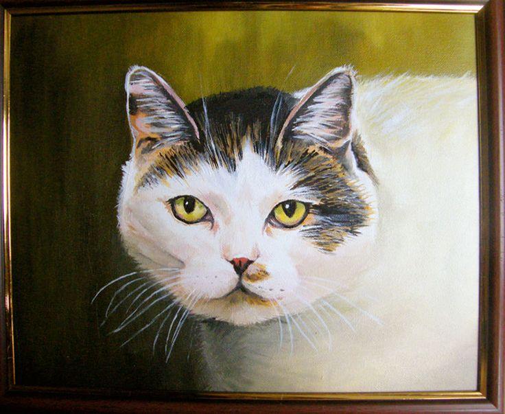 Portret kota - obraz olejny