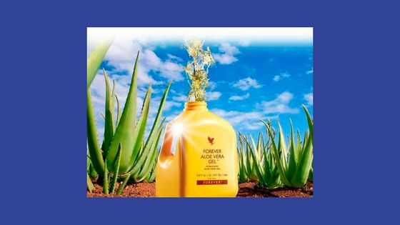 You'd like to help people with their health and - potentially - with their wealth, assisted by this aloe vera drink? For loads of key info, simply click this link: https://aloeverabusinessblog.wordpress.com/