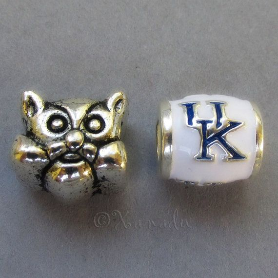 Kentucky Wildcats Logo And Mascot European Bead - University Of Kentucky College Football Charm Beads For European Charm Bracelets on Etsy, $7.95