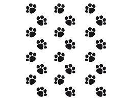 Résultats de recherche d'images pour «pattes de chats»