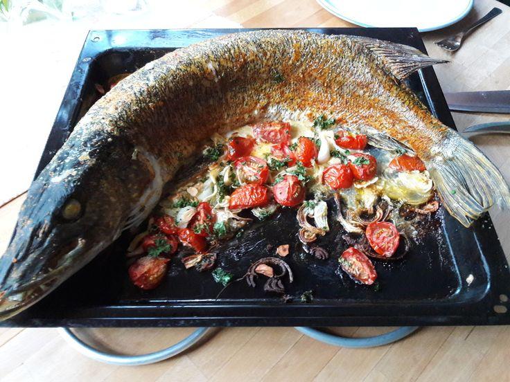 Bosses Hecht, ein sehr leckeres Rezept aus der Kategorie Fisch. Bewertungen: 58. Durchschnitt: Ø 4,5.