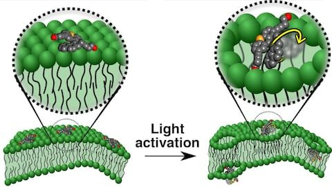 Nanomachines drill into cancer cells killing them in just 60 seconds!
