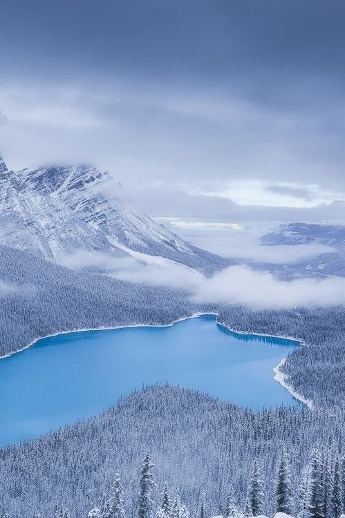 Peyto Surprise, Banff National Park, Canada, by Adam Gibbs, on 500px.(Trimming)