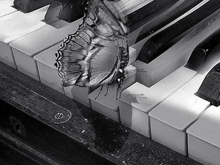 Pillangó és zongora