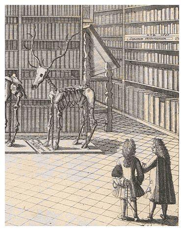 LeibnizCentral - Das Wissensportal zu Gottfried Wilhelm Leibniz: 03 Universität Altdorf