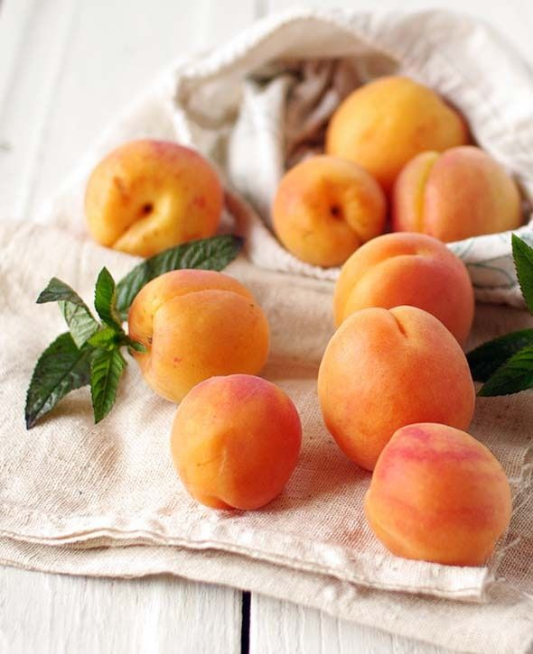 Peaches / nectarines/ apricots/ in the family