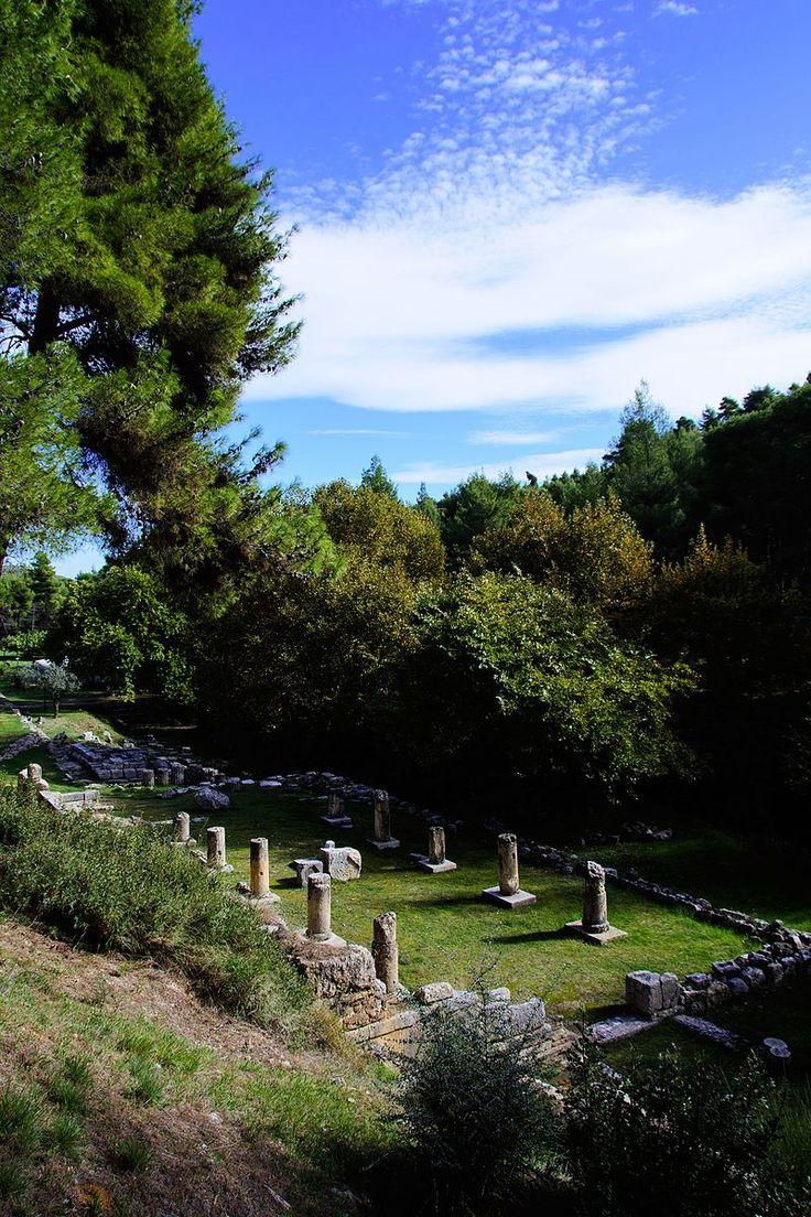 Το αρχαίο ιερό του αρχαιολογικού χώρου του Αμφιάρειου, εκεί όπου τα μνημεία συνδιαλέγονται θαυμαστά με το φυσικό περιβάλλον, θα «συστήσουν» στο κοινό οι μη κερδοσκοπικές οργανώσεις «Monumenta» και «Διάζωμα».
