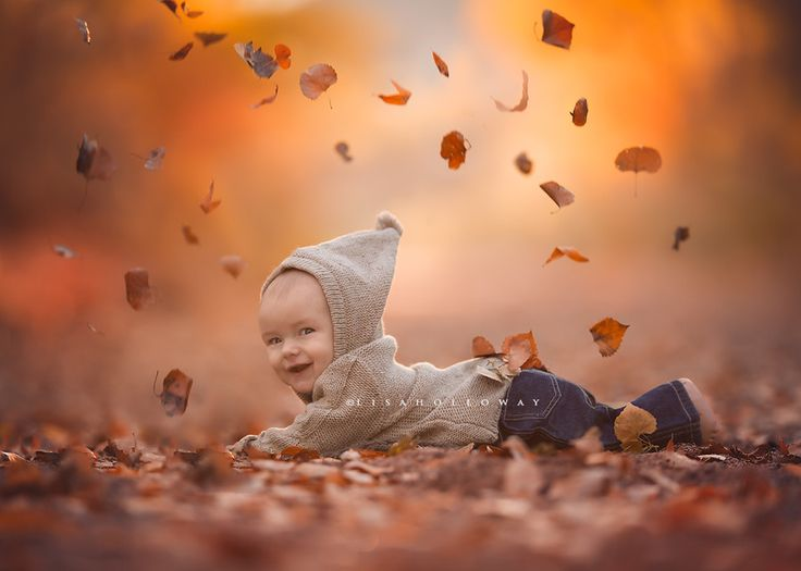 Fall by Lisa Holloway on 500px
