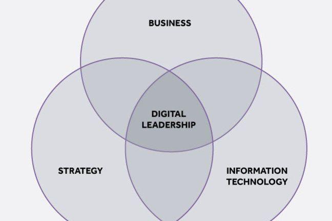 Three dimensions of Digital Leadership