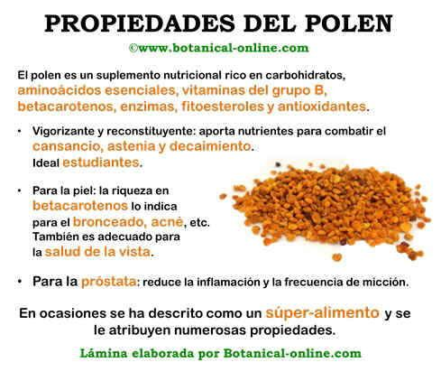 Propiedades del polen... Click en la imagen para que descubras todo su potencial en la salud!!