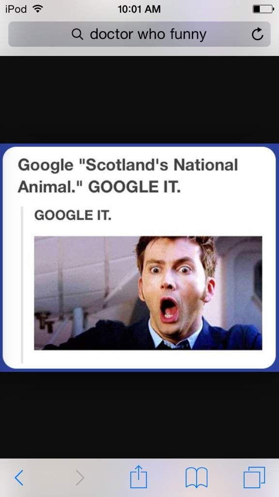Scotland's National Animal | Doctor Who Amino