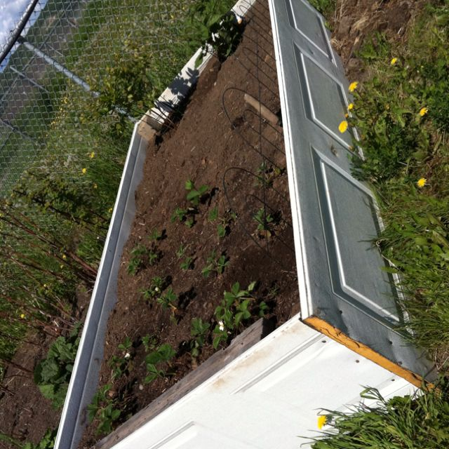 Reuse old garage door panels for inexpensive, quick, raised garden beds. I bet you could spruce it up a bit by painting the outside a nice color.