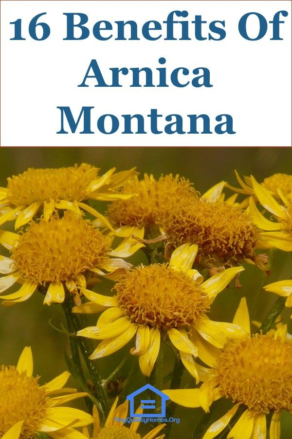 16+ What does arnica do ideas