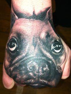 Hundeportrait Handrücken French Bulldog