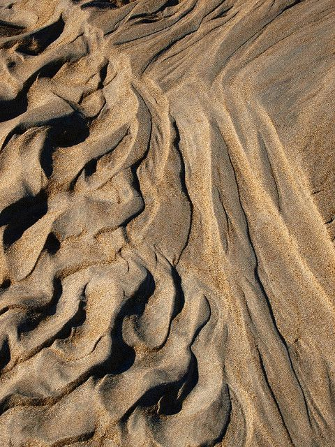Beach Sand (will make a nice piece of sandstone or even quartzite if we have patience!)