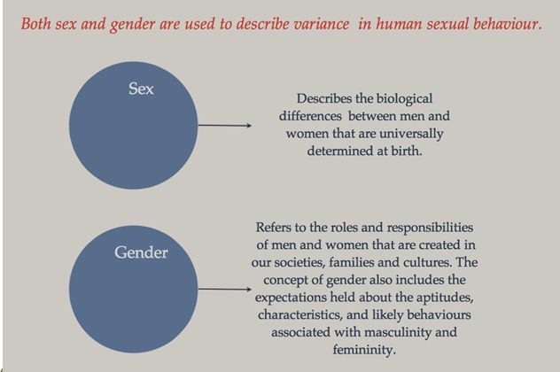 defining the notions of sex and gender Baseline definitions of key concepts and terms gender refers to the  gender  analysis is the collection and analysis of sex-disaggregated information men  and.