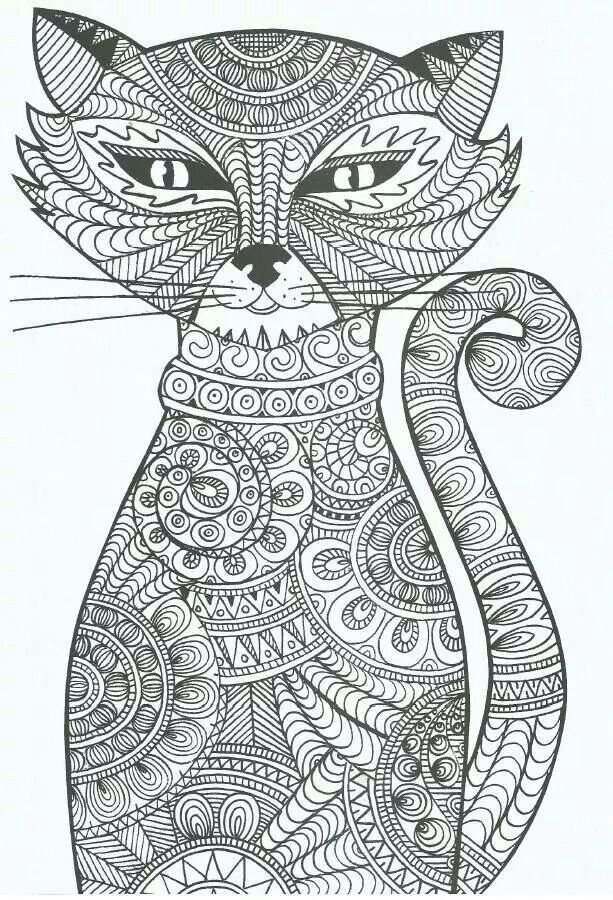 Chat Coloriage Pour Adultes Coloring Pages For Adults