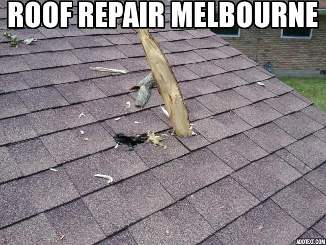 Roof Repairs Melbourne Roof Makeover Specialist In 2020 Roof Repair Roof Green Roof System
