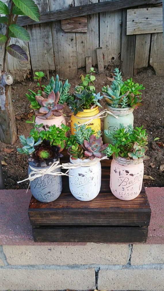 Super cute adorable rustic mason jar succulent arrangement customizable any color