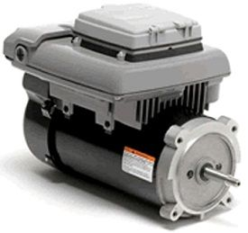 13 best pool pump images on pinterest pool pumps pools for Pinch a penny pool pump motors