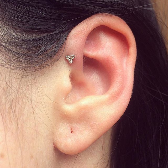 25 best ideas about forward helix piercing on pinterest forward helix ear peircings and cute. Black Bedroom Furniture Sets. Home Design Ideas