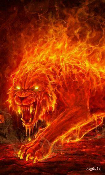 Löwe Flamen