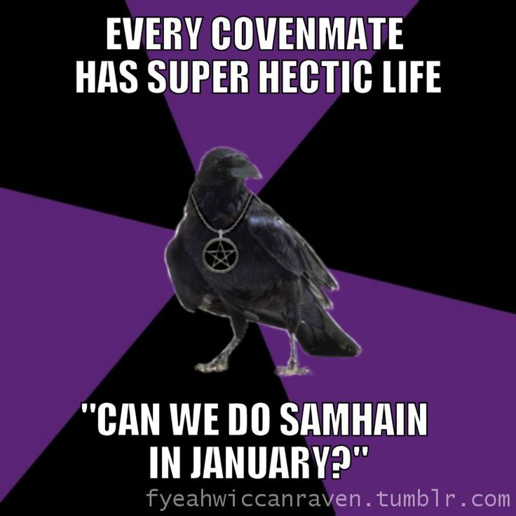 Fuck Yeah Wiccan Raven: Sounds about right! Lol