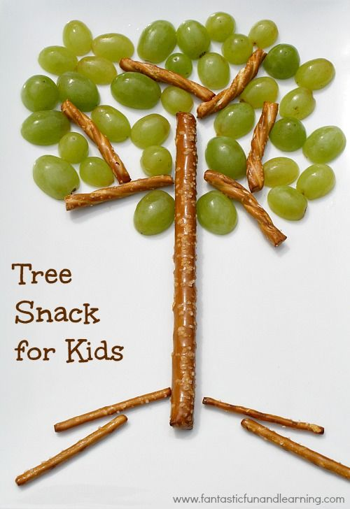 Tree Snack for Kids~Help kids learn about the parts of a tree with this easy snack idea