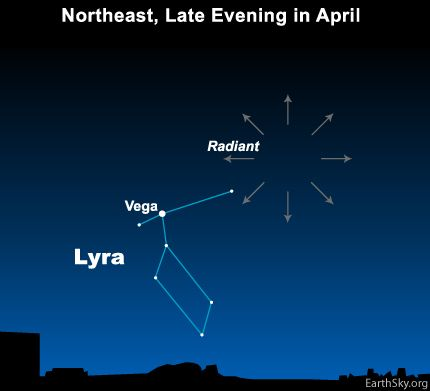 The radiant point for the yearly Lyrid meteor shower is near Vega, brightest star in the constellation Lyra the Harp. April 20-23...