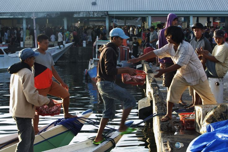 Pelabuhan Pelelangan Ikan Paotere Makassar, Sulawesi Selatan, Indonesia