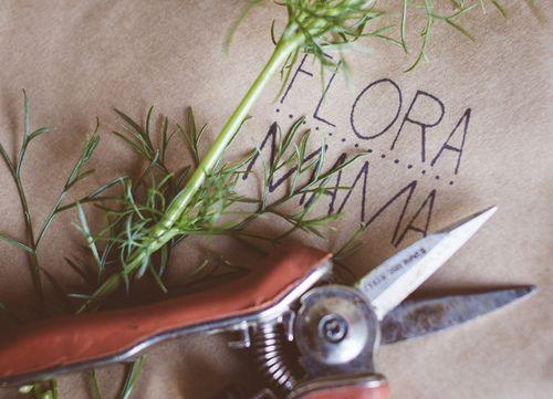 Ferme florale écologique spécialisée dans la culture de variétés anciennes et peu communes.