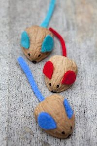 Racing walnut mice (marble underneath to help them roll down a slope)
