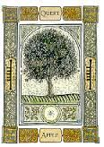 Image result for Celtic tree oracle, liz and colin murray