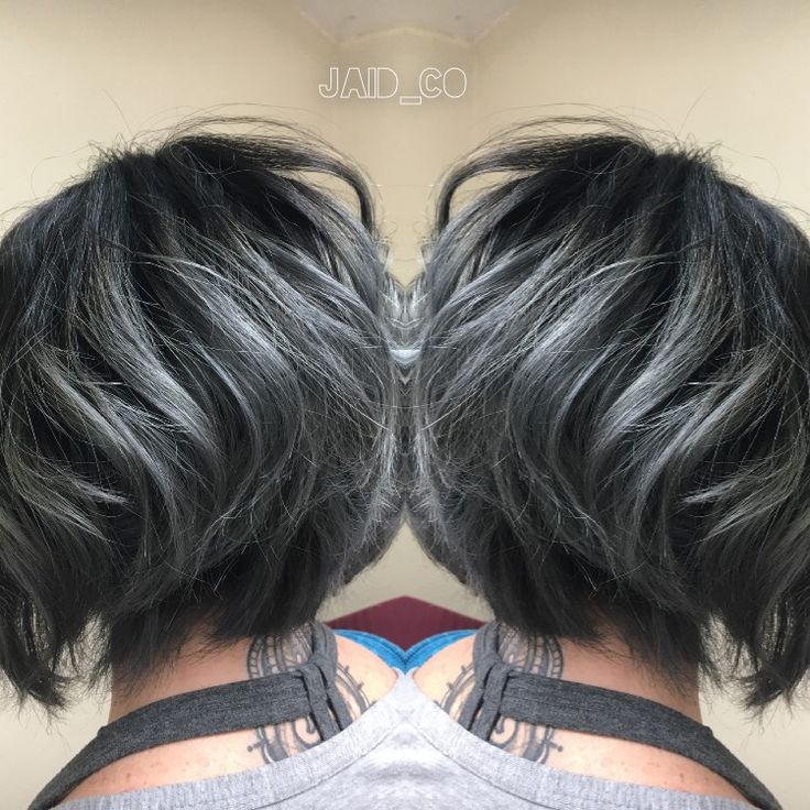 Silver highlights for gray hair choice image hair extension short black hair with silver highlights the best black hair 2017 best 25 silver highlights ideas pmusecretfo Image collections
