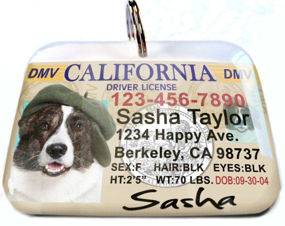 California driver license Old Personalized Custom ID Tags for dogs and cats Double Sided pet tags